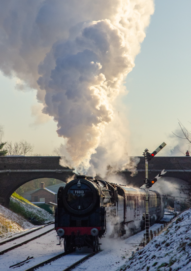 Picture of Snowy Express